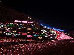 P1480029.jpg (Rambalac) Tags: japan illumination kanagawaken   sagamiharashi lumixgh4