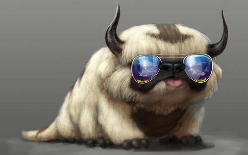 Cool Bully Dog Pet Animal Hd Wallpaper Stylish Hd