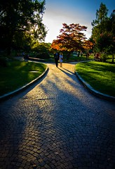 Romantic walk (laura.schepis) Tags: street autumn sunset parco canon torino tramonto tokina piemonte romantic autunno turin valentino coppia 1116 1100d