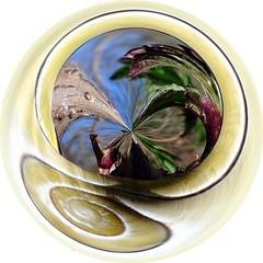 slak (dietmut) Tags: circles nederland thenetherlands 2012 zuidholland cirkels digitalfun eigenwerk ownwork digitaalbewerkt digitaledited dietmut maartmarch yourfavorites110