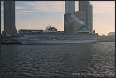 2014-12-14 Rotterdam - Artania - 2 (Topaas) Tags: rotterdam neworleans montevideo kopvanzuid worldportcenter wpc wilhelminapier hollandamerikakade phoenixreisen artania sonya77 sonyslta77 sonyslta77v mvartania
