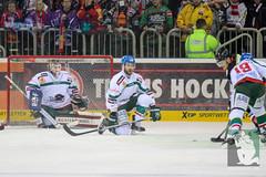 "DEL15 Düsseldorfer EG vs. Augsburg Panthers 28.12.2014 011.jpg • <a style=""font-size:0.8em;"" href=""http://www.flickr.com/photos/64442770@N03/16195251922/"" target=""_blank"">View on Flickr</a>"