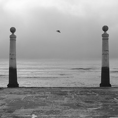 The door of Lisbon (Antnio Alfarroba) Tags: 120 film portugal mediumformat lisboa lisbon hasselblad lissabon lisbonne ilfordfp4 hasselblad501cm pelcula