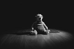 Solitario (Oxkar G) Tags: 2 macro blanco toy oso sony negro 8 slt juguete peluche 30mm a37 nikonsb24