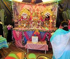 DSCN1109 (ursusdave) Tags: india festival hare baltimore parade krishna chariot 2015 ursusdave davidrobertcrews davidrobertcrews{akaursusdave}