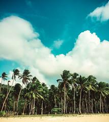 Philippines - Manila and Palawan (2016 03-04) -121.jpg (ikeofspain) Tags: trip holiday apple island asia paradise tour philippines tropical southeast elnido palawan lightroom 2016 hondabay nacpan iphone6