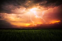 Thunder Lightning (No. Photo) Tags: light storm field rain weather clouds canon landscape iso100 photo frames glow iso400 wheat tripod dramatic f16 5d glowing lightning drama f28 thunder markii 1125 14mm samyang remoter 5dmk2