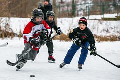 RD1_0581 (rick_denham) Tags: canada hockey goalie puck stcatharines defense forward on