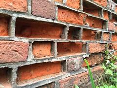 16-157 (Gray Singer) Tags: weather wall skeleton pattern wind bricks norfolk erosion mortar lattice northwalsham