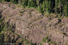 20160620-20160620-DSC_0207 (laitken01) Tags: mountain alaska cruising rockface juneau southofjuneauska