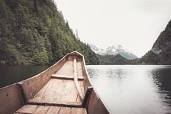 with the wind (Karin Ziegler) Tags: mist lake tree nature fog forest austria boat sterreich nikon steiermark styria badaussee d810 pltte karinziegler