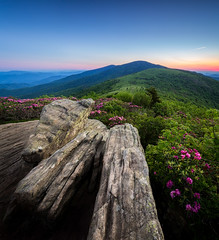Jane Bald, Roan Mountain Sunset... [Explored] (jason_frye) Tags: roanmountain northcarolina tennessee mountains blueridgemountains janebald rhododendron flowers sunset hiking appalachiantrail visitnc
