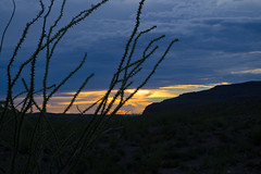 Sunset Silhouette (TastyPrawn) Tags: texas bigbend westtexas desert mountains bigbendranch bigbendranchstatepark bigbendstatepark sky clouds sunset silhouette