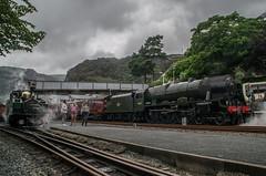 46115 - 1Z27 - Blaenau Ffestiniog - 26.07.2016(3) (Tom Watson 70013) Tags: 46115 scots guardsman 1z27 welsh mountaineer train steam engine loco blaenau ffestiniog royal scot class wales