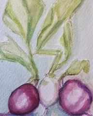 CCAC 8.13.16 Radishes (Radi?) still life (Howard TJ) Tags: instagramapp square squareformat iphoneography uploaded:by=instagram radish radi still life painting watercolor water color