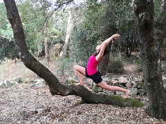 Low lunge on a tree 2 (Claudia Olla) Tags: yoga yogalove yogalover yogafam yogafamily yogapants yogainspiration yogachallenge yogajourney yogaprogress yogaeverywhere yogaeveryday yogaeverydamnday yogini practiceandalliscoming headstand handstand backbend motivation workout fitness fitgirl homepractice