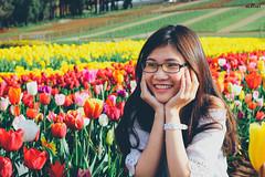 Tulip (#Sammie) Tags: tulip flower plant