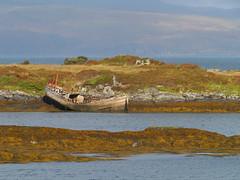 Fishing boat wreck, Puilladobhrain, Seil (Niall Corbet) Tags: scotland argyll seil puilladobhrain coast sea seaweed fucus boat wreck