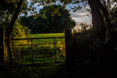 Memories of Summer (Explore) (trevorhicks) Tags: trees sunset summer field grass canon gate devon tamron tavistock 700d