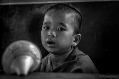 Boy with conch (karmajigme) Tags: boy blackandwhite bw monochrome childhood nikon child noiretblanc religion monk monastery conch