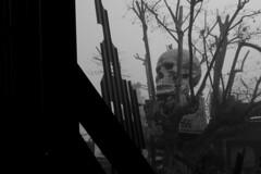 P1040986 (Abode of Chaos) Tags: portrait sculpture streetart france art mystery museum architecture painting graffiti ruins rawart outsiderart chaos symbol contemporaryart secret 911 apocalypse taz peinture container artbrut ddc sanctuary cyberpunk landart alchemy modernsculpture prophecy 999 vanitas sanctuaire dadaisme artprice salamanderspirit organmuseum saintromainaumontdor demeureduchaos thierryehrmann alchimie artsingulier prophtie abodeofchaos facteurcheval palaisideal postapocalyptique maisondartiste artistshouses sculpturemoderne gesamtkuntwerk groupeserveur lespritdelasalamandre servergroup