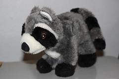 blackandwhite animal toy stuffed friend florida dump mascot raccoon racoon brooksville elzey richardelzey