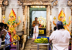 Hindu temple servant in Singapore (inspiring!) Tags: travel people holiday travelling thailand photography singapore asia southeastasia niceshot photographer photos indian religion working culture hindu inspiring aasia travelphotography flickrfriday flickrstars flickrhearts flickraward religiousculture earthasia bestpeopleschoice wonderfulasia crossaward