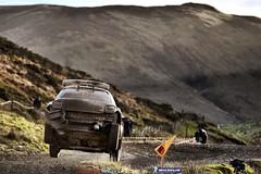 2014 WRC Wales Rally GB - Day 1 (bestofrallylive) Tags: auto paris france car sport wales 14 rally gb motor rallye motorsport 2014 wrcworldrallychampionship championnatdumondedesrallyes wrcworldchampionship