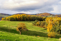 Le plat de Saint Romain-5.jpg (yann.dimauro) Tags: automne rhone lyonnais yzeron