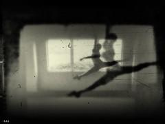 Gefühl kommt angeflogen....ich bin hier,ich bin da,ich bleibe. (Photography-Rainer Arend) Tags:
