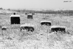 Sinister (Greyshift11) Tags: snow canon landscape eos rebel colorado united neige states mm 45mm unis t3i 1445 200mm 14mm etats 600d
