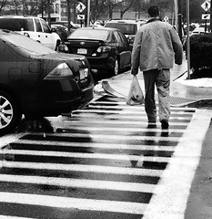 Crosswalk (mgstanton) Tags: street stripes crosswalk 52weeks2015