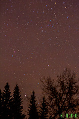 First Star shoot (DKG Images) Tags: trees canada mountains calgary night stars star damien alberta goodyear yyc dkg bigspringhill dkgimage dkgimages