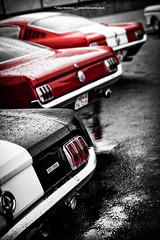 Fastbacks (Dejan Marinkovic Photography) Tags: classic ford car muscle pony american mustang fastback
