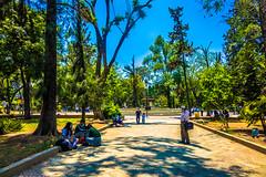 A park in Oaxaca.