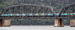 2016 - Sydney - Crossing the Hawkesbury (Ted's photos - For Me & You) Tags: bridge train pier nikon sydney australia wideangle cropped vignetting hawkesbury hawkesburyriver 2016 sydneyau tedmcgrath tedsphotos nikonfx hawkesburyriverrailwaybridge nikond750 brooklynrailbridge spanwaterpierbridge