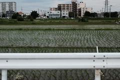 Fujifilm X70 : June 25, 2016 (takuhitofujita) Tags: flickr 自然 建物 水 構造 eyefi eyeficloud fujifilmx70