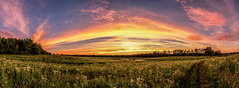 The Arc of my dream  (Dahai Z) Tags: sunset panorama hdr cookcountyforestpreserve 6shotpano viveza2 deeargrovefp