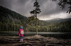 Arbersee (silkefoto) Tags: see wolken kind wald mdchen arber tanne dster bayrischerwald arbersee