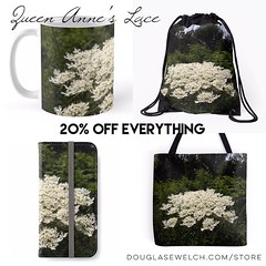 Queen Anne's Lace Covers, cases, clothing, bags and more exclusively from http://ift.tt/1hfrEWq #clothing #technology #home #products #gifts #shopping (dewelch) Tags: ifttt instagram queen annes lace covers cases clothing bags more exclusively from httpdouglasewelchcomstore technology home products gifts shopping