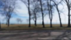 Along The Way (michael.veltman) Tags: trees lake chicago blur drive illinois shadows michigan shore