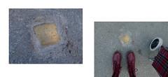 looking for clues (A. L. Utne) Tags: liseutne stolperstein stolpersteine trondheim diptych diptychs lookingforclues holocaust norwegianholocaust wulffisaksen snublestein snublesteiner