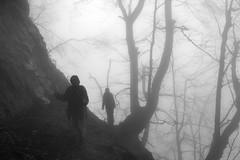 spooky trail ✿ (cyberjani) Tags: bw nature fog forest slovenia cave rakitna vihrenica