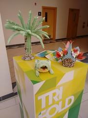 2014-11-03 13.14.28 (felipefonseca) Tags: trip doha qatar vcuq mfavcuq