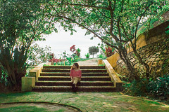 5 (Tsaqib Al-Hasawi) Tags: trees red green texture girl stairs garden women hill penang botanicalgarden mosses