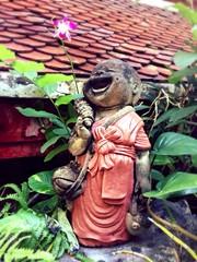 Always laugh just like baby Buddha