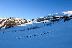 2014-4 (lstuvik) Tags: winter snow norway norge vinter 2014 haukeli vgslid haukeliskisenter
