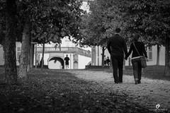 Walk in the park (manuel.birkfeld) Tags: street stuttgart