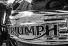 TRIUMPH (Walimai.photo) Tags: bw white black byn blanco branco lumix noir negro preto panasonic motorbike triumph moto blanc motocicleta lx5