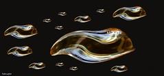 school of winefish (HansHolt) Tags: school fish abstract reflection art photoshop bottle arty wine bottom vis fles wijn reflectie bodem canonef100mmf28macrousm canoneos6d winefish wijnvis
